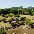 Photos: 木之本 地蔵院 庭園_01
