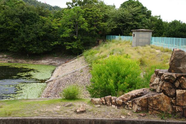 Photos: 直島ダム_03
