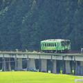 Photos: 北河内駅 上り車両_03