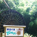 Photos: 根笠のでかまる君_01