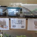 Photos: しあわせの村 すずむし_01