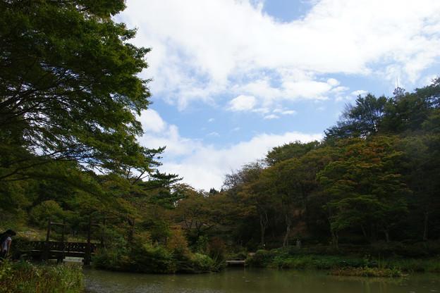 六甲高山植物園 青空_01