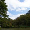 Photos: 六甲高山植物園 青空_01