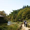 Photos: 六甲高山植物園 青空_02
