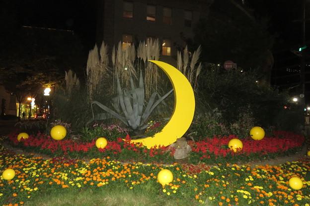 朝日ビル 庭の月