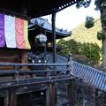 Photos: 長谷寺 本堂と登廊