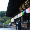 Photos: 長谷寺 本堂と五重塔