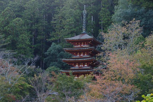 長谷寺 舞台から五重塔