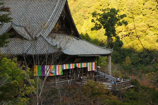 Photos: 長谷寺 本堂を臨む