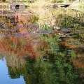 湖畔の紅葉_01