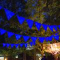 Photos: 広場のライトアップ_02