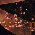 Photos: 広場のライトアップ_04