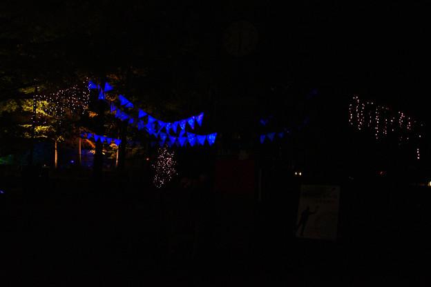 Photos: 広場のライトアップ_05