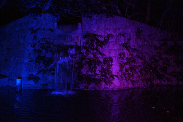 滝のライトアップ_04