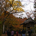 高源寺 境内の紅葉_05