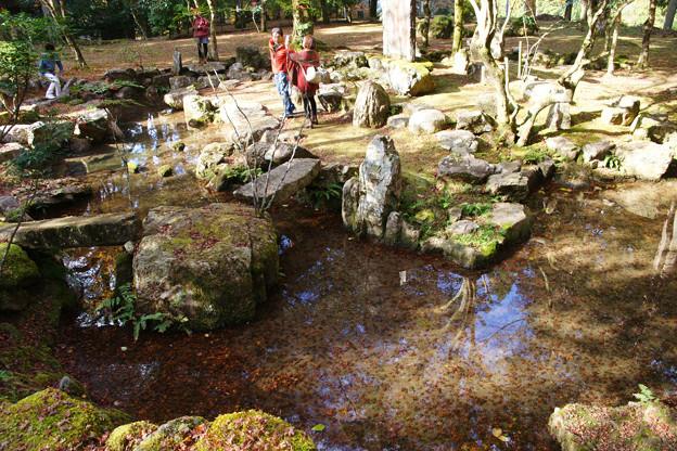 Photos: 高源寺 心宇の池