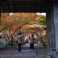 Photos: 円通寺 山門の紅葉_01