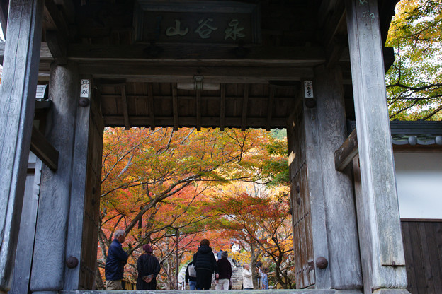 Photos: 円通寺 山門の紅葉_03