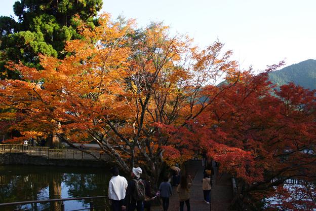 円通寺 境内の紅葉_05