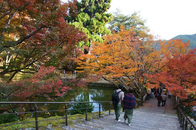 Photos: 円通寺 境内の紅葉_06