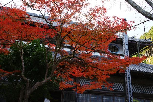 Photos: 円通寺 本堂の紅葉_02