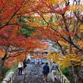 Photos: 円通寺 境内の紅葉_07