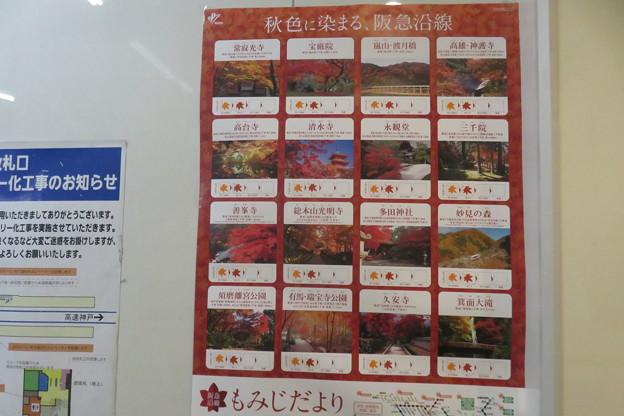 阪急 紅葉は見ごろ