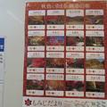 Photos: 阪急 紅葉は見ごろ