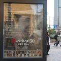Photos: 男はつらいよ お帰り寅さん_01