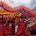 Photos: 龍舞 神港橘高等学校龍獅団_10