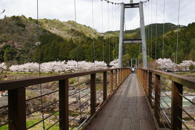 川代公園 吊り橋