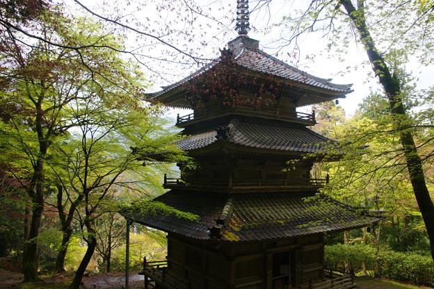 高源寺 三重塔の新緑