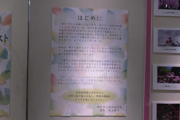 Photos: フォトコンテスト出品作品_02