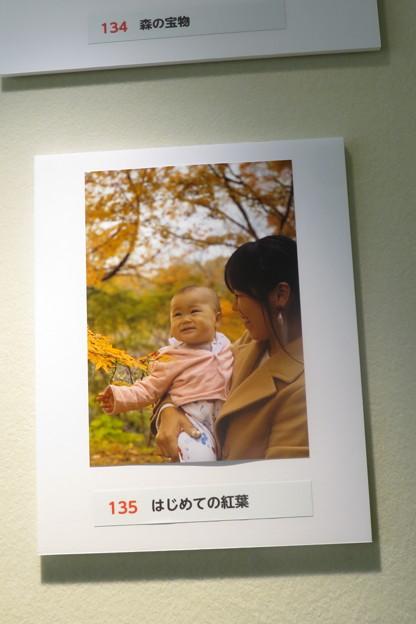 フォトコンテストお気に入り作品_02