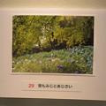 Photos: フォトコンテストお気に入り作品_05