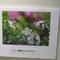 Photos: フォトコンテストお気に入り作品_06