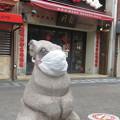 Photos: 南京町広場のマスクたち_05