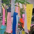 Photos: 七夕かざり 新開地_06