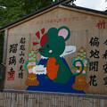 Photos: 瑠璃寺 巨大絵馬