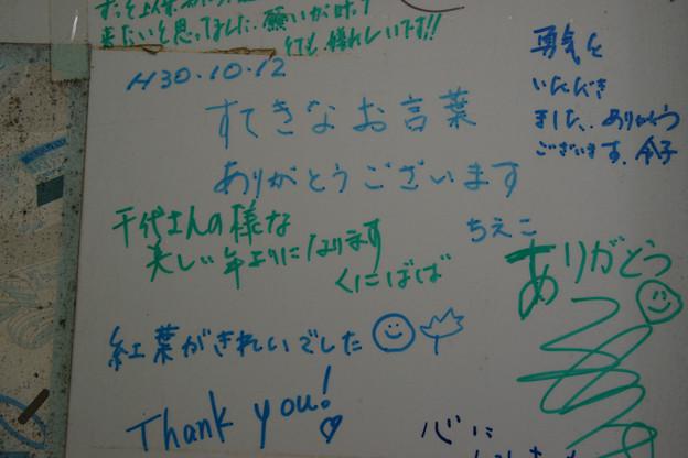 宇野千代先生へのメッセージ_01