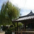 湘江庵の井戸