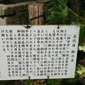 湘江庵の柳の説明
