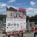 Photos: 錦帯橋霊園