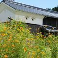 Photos: 秘境 小河の里_03