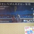 Photos: 宇宙でいちばんあかるい屋根_01