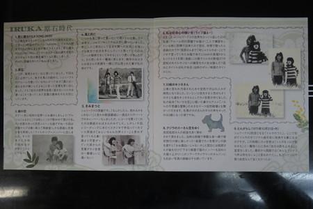 イルカ 原石時代 紹介_02