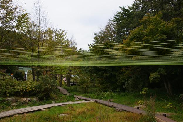 水糸の庭_02
