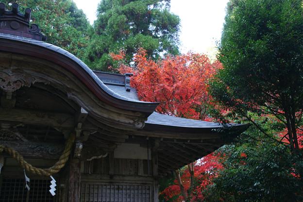 稲荷神社の紅葉_01