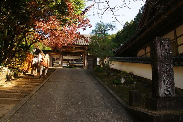宗鏡寺の参道