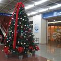 サンチカ クリスマスツリー_01